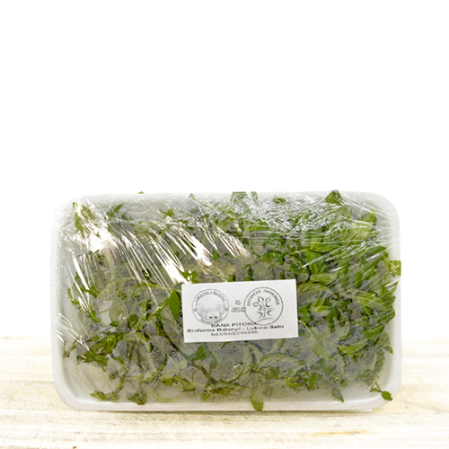 Organic fresh mint (in pack) 100g
