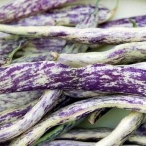 Fresh organic colorfull string beans (pack 250g)