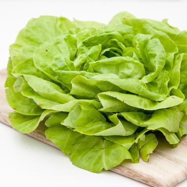 Organska zelena salata (glavica)