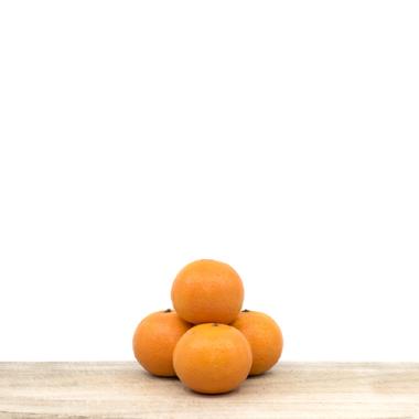 Organic tangerine (kg)