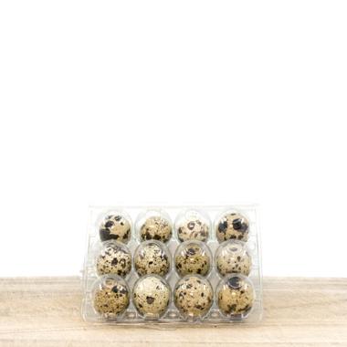 Prepeličja jaja (pakovanje 12 jaja)
