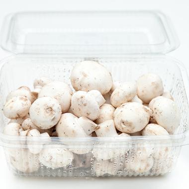 Organic White Champignons (pack 300g)